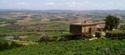 Siena and the Chianti Wine-area